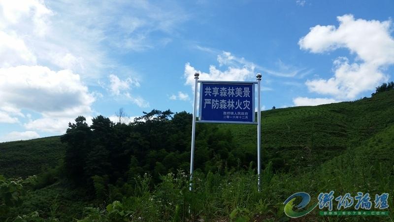 shengqiao07.jpg